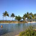 Airlie Beach Restaurants and Cafés